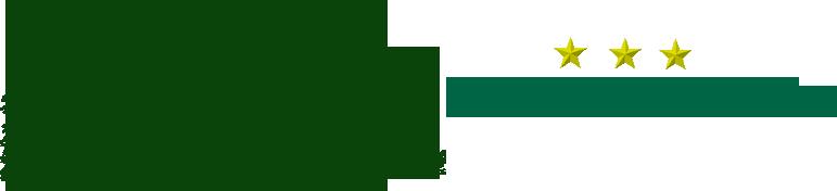 HOTEL PÜNJER Logo